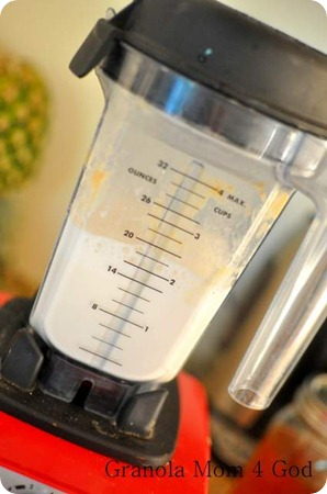 clean Vitamix jar