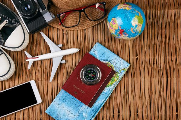 Travel Pest Prevention