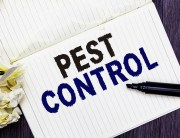 Link to blogpost: Is Pest Control Worth the Investment?