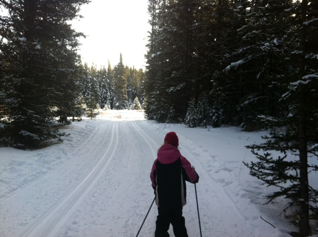 Pocaterra cross country skiing