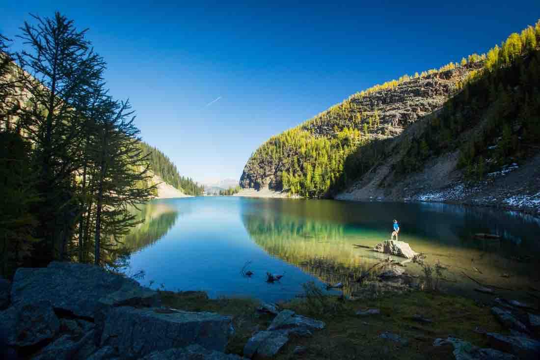 Lake Agnes Tea House: The best kept secret in Lake Louise
