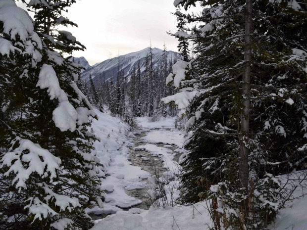 What you need to know about snowshoeing Marble Canyon