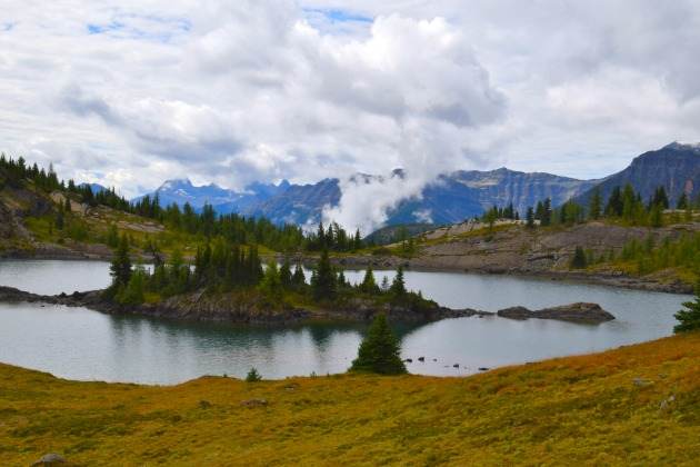 Sunshine Meadows Hike: Lonely Planet says it's #1