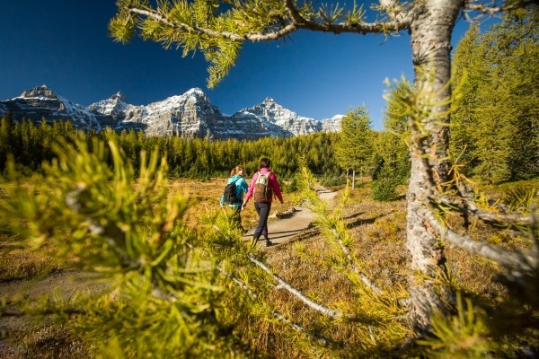 Everything you need to know before hiking Larch Valley