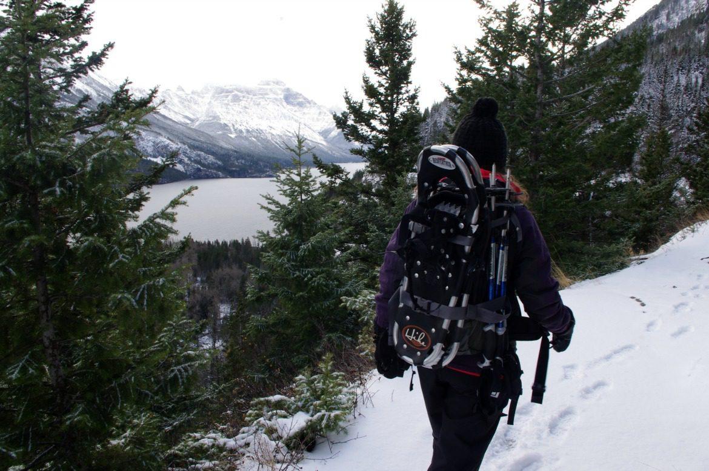 snowshoeing winter waterton national park