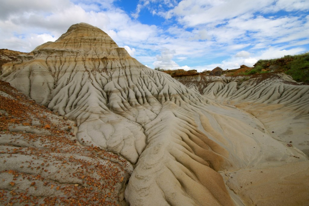 What to know before camping and taking a tour of Dinosaur Provincial Park