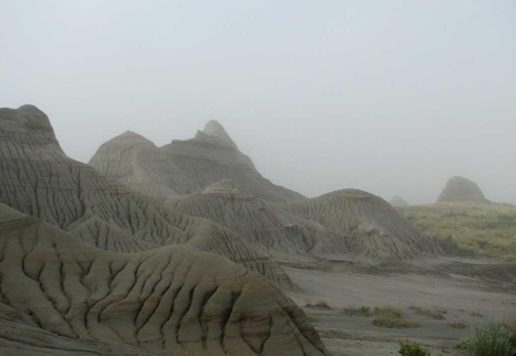 A vacation 85 million years in the making dinosaur provincial park