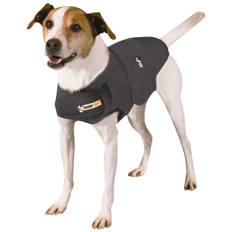 dog stress shirt