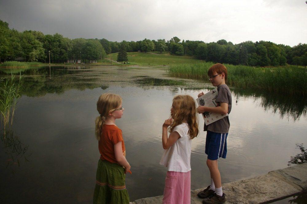 mont royal park lake