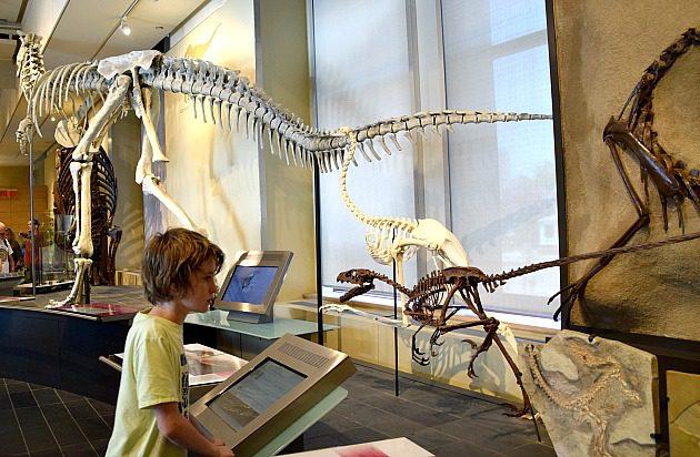 Children's nature museum ottawa