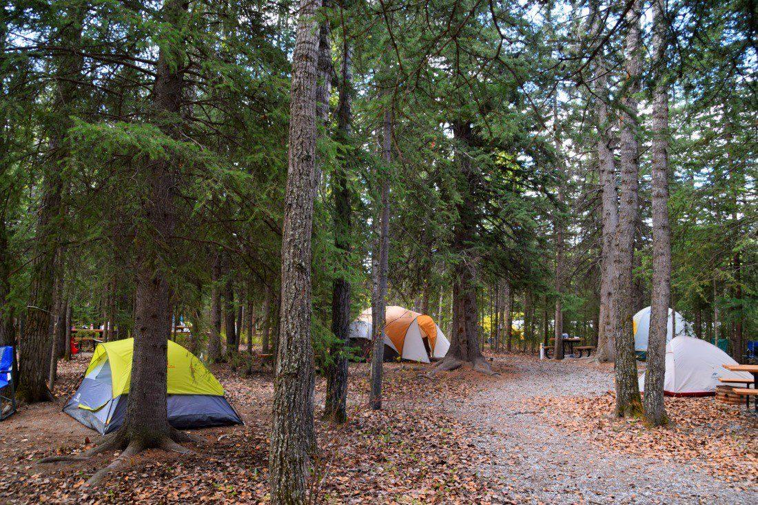 wapiti campsite canmore alberta