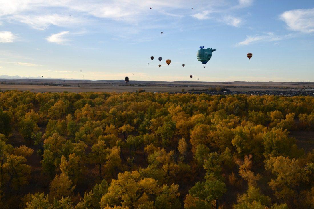 hot air balloons in international balloon festival heritage inn