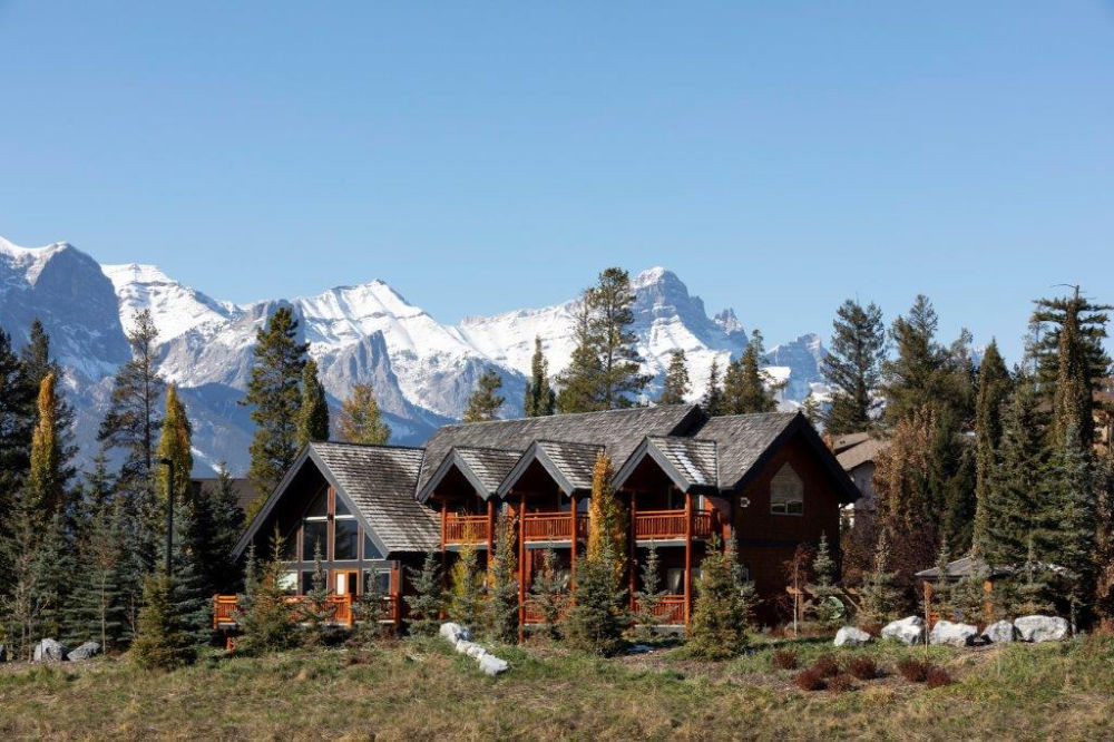 bear and bison b&B canmore