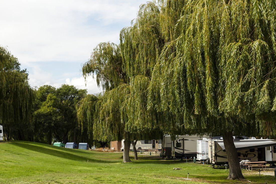 osoyoos camping