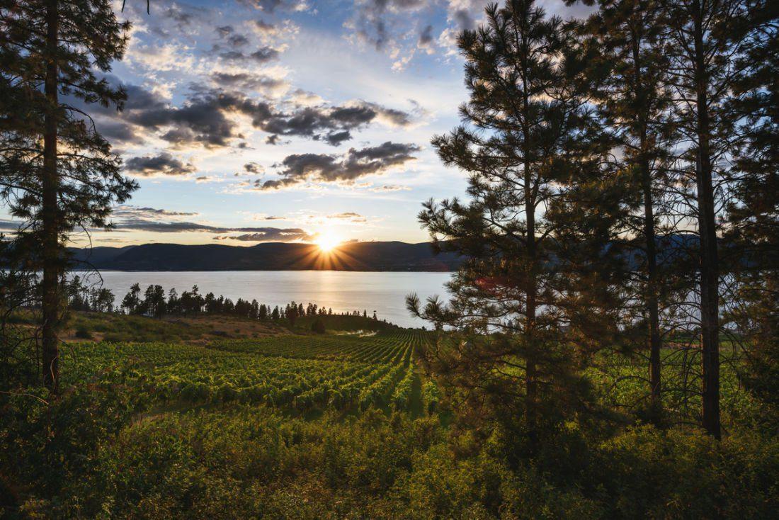 winery lake okanagan