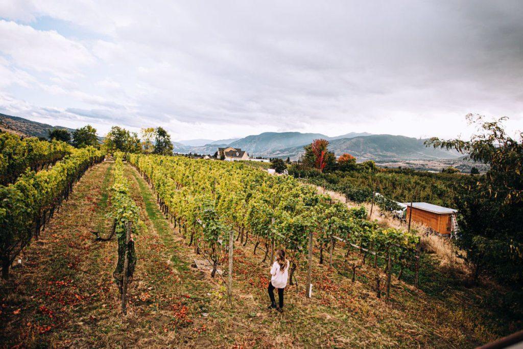 Penticton Wine Tours
