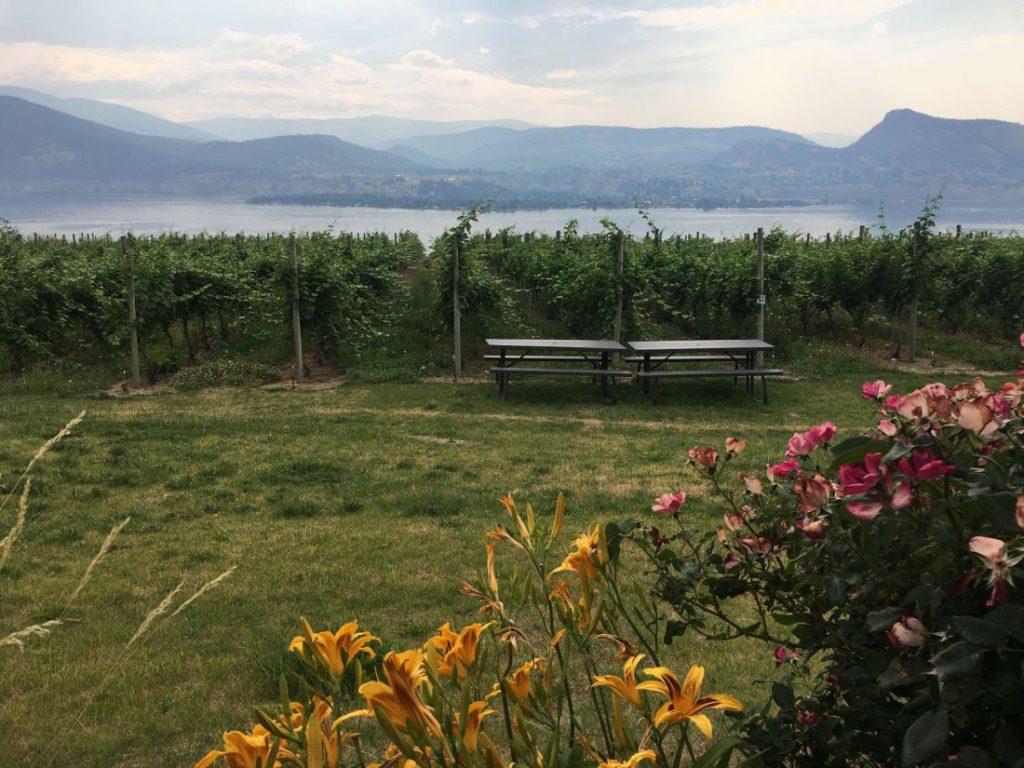 naramta bench wine touring