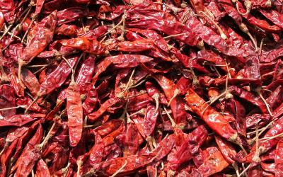 Gedroogde rode peper, onderweg, West-Bengalen, India, 2009