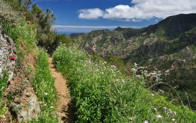 La Gomera, richting Vallehermoso