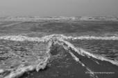 Harde wind bij Zandvoort 11-1-2014