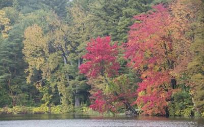 Lake Shaftsbury National Park VT, USA, 9-10-2015