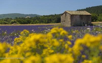 Saint Christol, Provence, Frankrijk, 7-7-2016