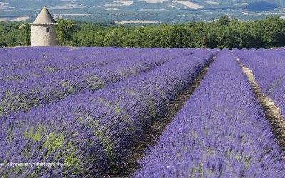 St. Trinit, Provence, Frankrijk, 13-7-2016