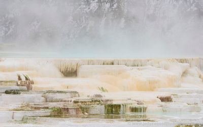 Canary Spring, Mammoth Hot Spring, Yellowstone, USA, 20-1-2019