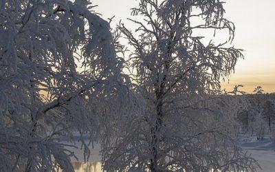 Kutuniva, Finland, 26-1-2020