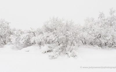 Teiliniemi, Finland, 30-1-2020