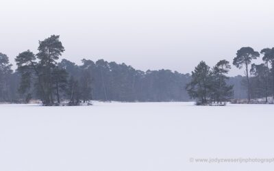 Goorven, Oisterwijkse Vennen, 2018