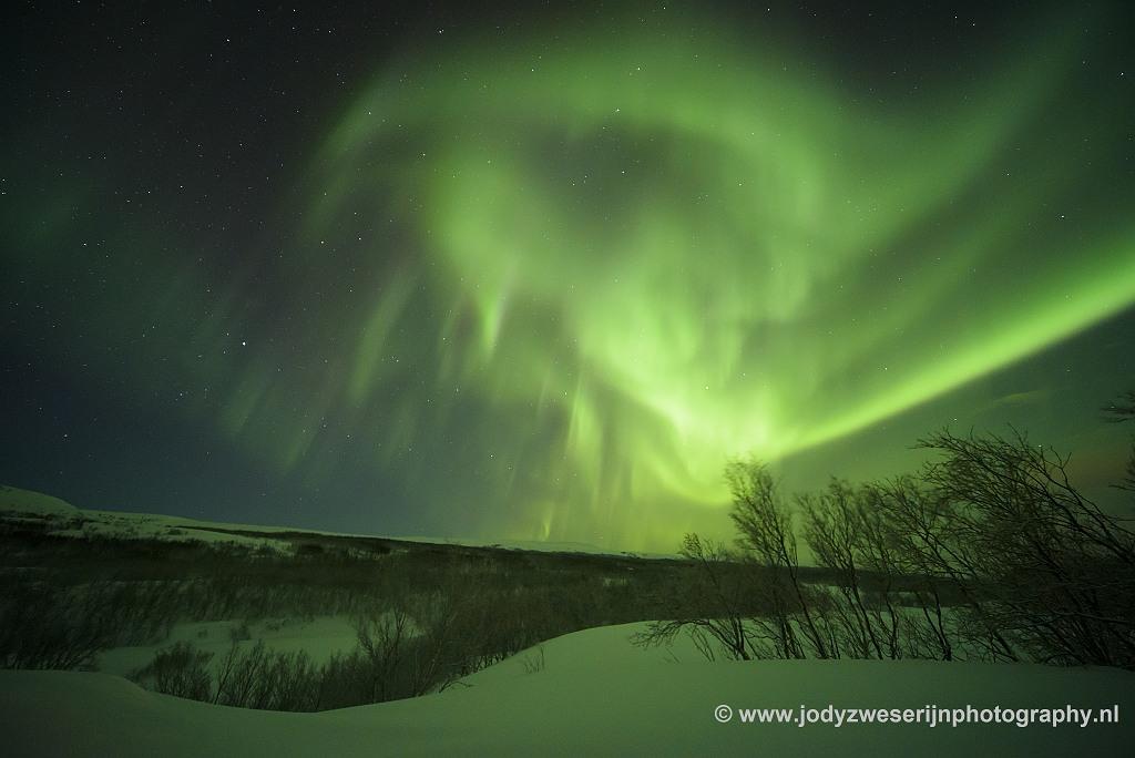 Noorderlicht, januari 2020