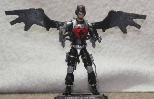 Black Vulture 05