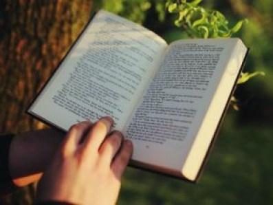 Leer, además de un placer, es necesario para lubricar nuestro cerebro.