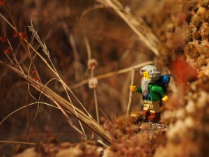 lego hiker on cactus