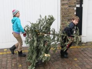 christmastreedown