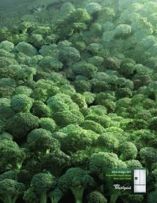 broccoli2010saatchiPuerto