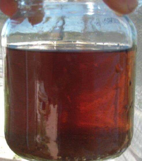 Go to How to Use Compost Tea