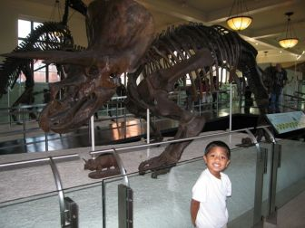 At the dinosaur exhibits