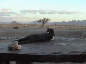 20040317 26 Namibia D845
