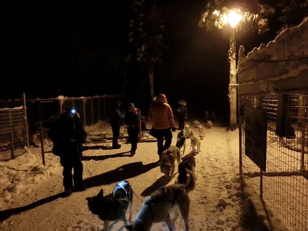 20130129 169 Kiruna Husky_Tour
