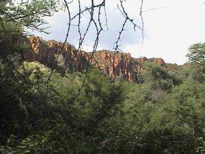 20040311 05 Namibia Waterberg