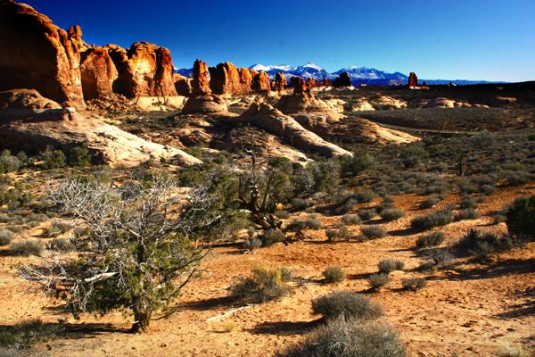 Scenic Pictures Of The Utah Desert