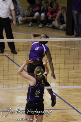Wilson Lady Dragon Tanisha Steinike (#5) goes for a kill during the Wilson versus Weskan KSHSAA Class 1A Division II State Volleyball Pool II match with Weskan winning 26-24, 25-12 in Hays, Kansas on October 26, 2012. (Photo: Joey Bahr, www.joeybahr.com)