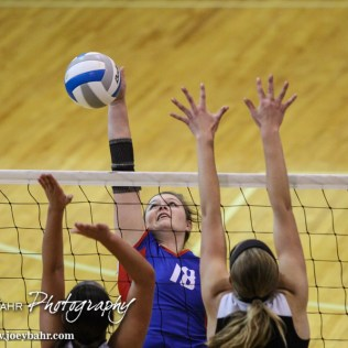 Ellinwood Lady Eagle Macy Menges (#18) hits the ball during the 2014 Central Prairie League Volleyball Tournament at Hoisington Activity Center in Hoisington, Kansas on October 18, 2014. (Photo: Joey Bahr, www.joeybahr.com)