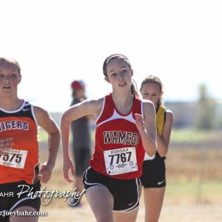 during the KSHSAA 4A Cross Country Regional