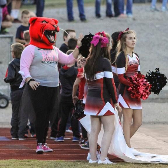 The Ellsworth Bearcat mascot greets fan before the game. The Hoisington Cardinals defeated the Ellsworth Bearcats 39 to 20 at Shanelac Field in Ellsworth, Kansas on October 14, 2016. (Photo: Joey Bahr, www.joeybahr.com)