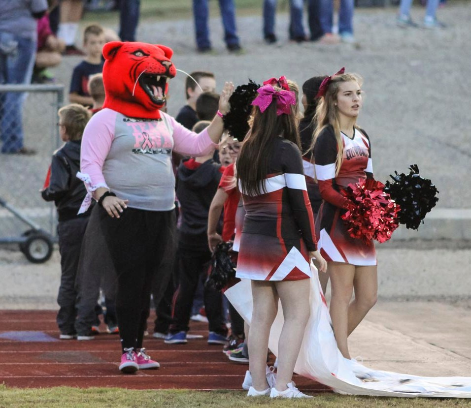 The Ellsworth Bearcat mascot greets fan before the game. The Hoisington Cardinals defeated the Ellsworth Bearcats 39 to 20 at Shanelac Field in Ellsworth, Kansas on October 14, 2016. (Photo: Joey Bahr, www.joeybahr.com)