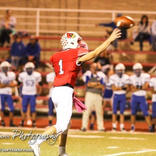 Hoisington Cardinal Tyler Specht (#1) throws a pass. The Hoisington Cardinals defeated the Lyons Lions to win the KSHSAA Class 3A District 15 Championship at Elton Brown Field in Hoisington, Kansas on October 27, 2016. (Photo: Joey Bahr, www.joeybahr.com)