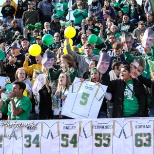 Fans of the Pratt Greenbacks cheer as the team is announce prior to the start of the game. The Pratt Greenbacks defeated the Hayden Wildcats 48 to 14 to win the KSHSAA Class 4A Division II State Championship Game at Salina Stadium in Salina, Kansas on November 26, 2016. (Photo: Joey Bahr, www.joeybahr.com)